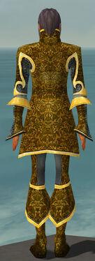 Elementalist Elite Canthan Armor M dyed back