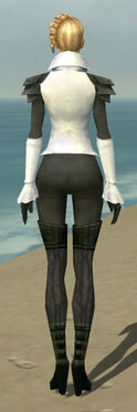 Mesmer Ascalon Armor F gray back