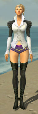 Mesmer Ascalon Armor F gray chest feet front