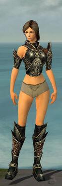 Warrior Kurzick Armor F gray chest feet front