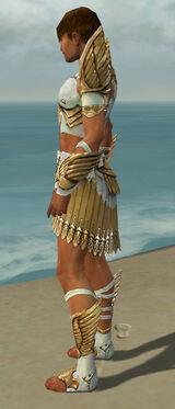 Paragon Elite Sunspear Armor M dyed side