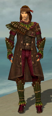 Ranger Druid Armor M dyed front