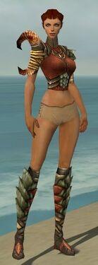 Ranger Elite Drakescale Armor F gray chest feet front