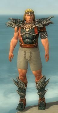 Warrior Luxon Armor M gray chest feet front