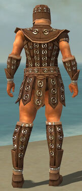 Warrior Ascalon Armor M dyed back