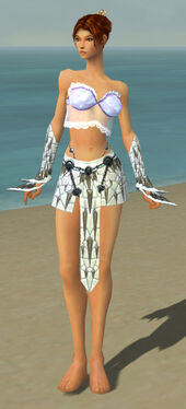 Elementalist Elite Iceforged Armor F gray arms legs front