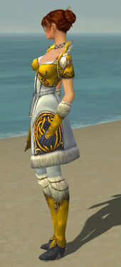 Elementalist Norn Armor F dyed side