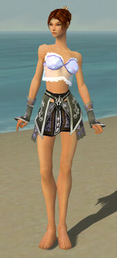 Elementalist Shing Jea Armor F gray arms legs front