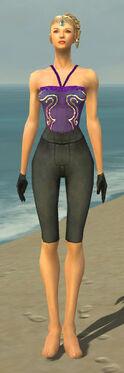 Mesmer Ascalon Armor F gray arms legs front
