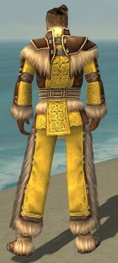 Monk Norn Armor M dyed back