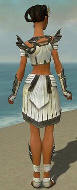 Paragon Ancient Armor F gray back