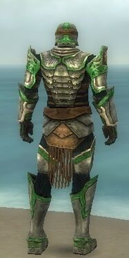 Warrior Sunspear Armor M dyed back