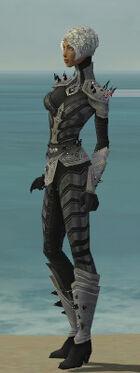 Elementalist Obsidian Armor F gray side