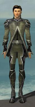 Elementalist Shing Jea Armor M gray front