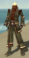 Monk Kurzick Armor M gray front