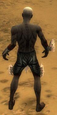 Necromancer Primeval Armor M gray arms legs back