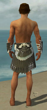 Paragon Elite Sunspear Armor M gray arms legs back
