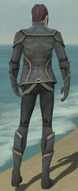 Elementalist Ascalon Armor M gray back