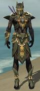Ritualist Elite Kurzick Armor M gray front