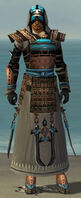 Dervish Monument Armor M gray front