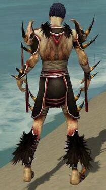 Necromancer Ancient Armor M dyed back