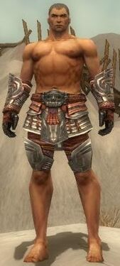 Warrior Asuran Armor M gray arms legs front