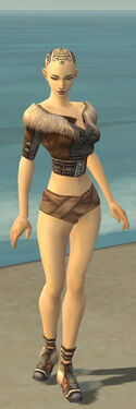 Monk Norn Armor F gray chest feet front