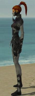 Assassin Kurzick Armor F gray side