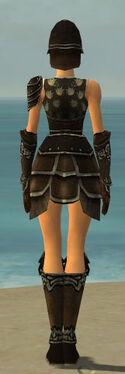 Warrior Shing Jea Armor F gray back