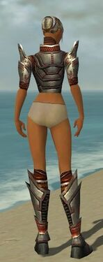 Warrior Asuran Armor F gray chest feet back