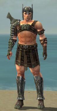 Warrior Elite Gladiator Armor M gray front