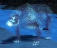 Bear Spirit