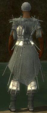 Elementalist Primeval Armor M gray chest feet back