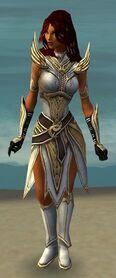 Hayda Armor Brotherhood Front