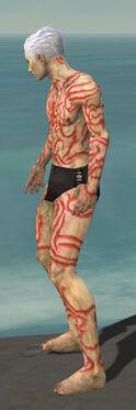 Necromancer Scar Pattern Armor M dyed side