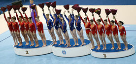 2010 team final
