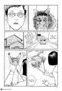 Ito-junjis-cat-diary-2241301
