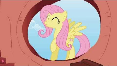 Fluttershy - you rock woohoo