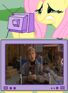 127189 - dumb and dumber fluttercry fluttershy if you laughed at this you are a heartless monster pretty birdy tv meme