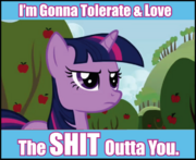 MLP tolerate and love-(n1298853924898)-(n1301128566283)-(n1305752004146)