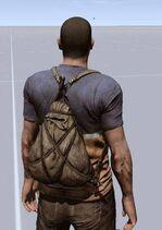 Framedbackpack