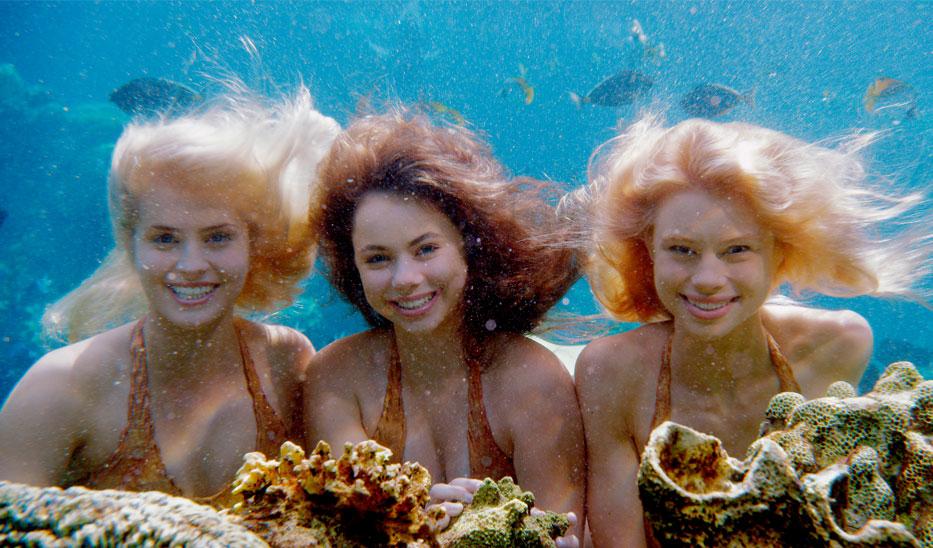 Image Mako Mermaids Underwater