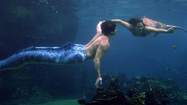 File:Zac and evie swimming.JPG