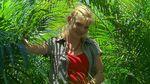 Rikki jungle