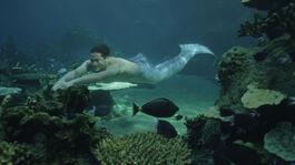 Zac swimming