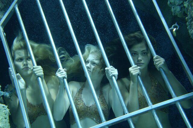 File:Mermaids Trapped.jpg