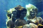 H2O Mermaids Underwater