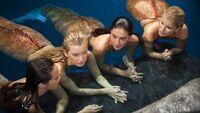 Mermaids and Girl Mermaid in Moon Pool