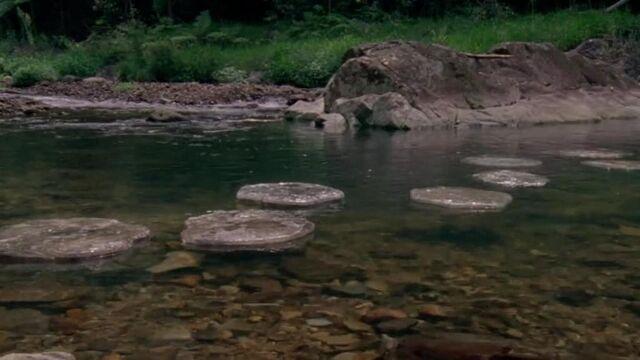 File:Stepping stones.jpg