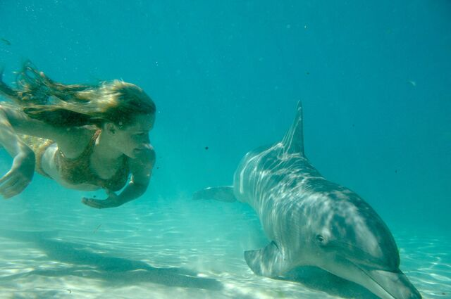File:Emma Swims With Dolphin.JPG